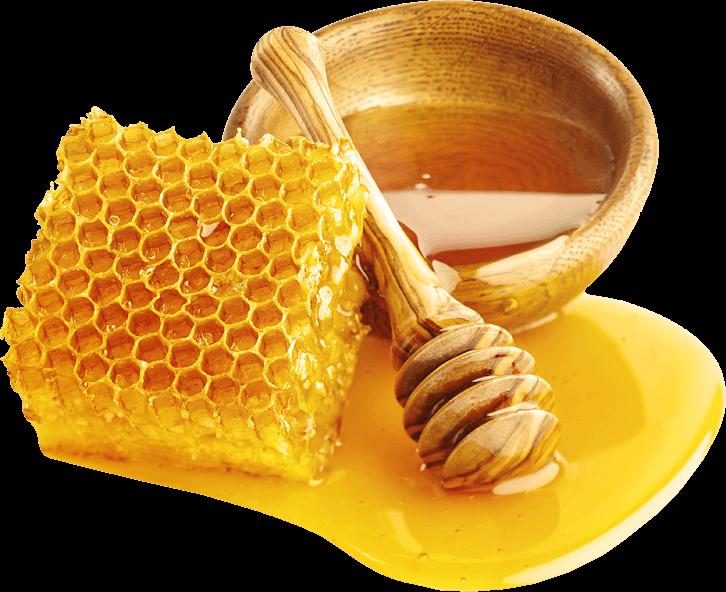 и продукты пчелопроизводства